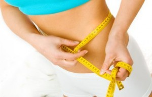 Weight Loss Program How does it Wor