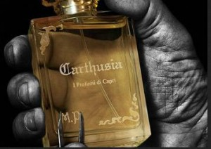 carthusia fragrance